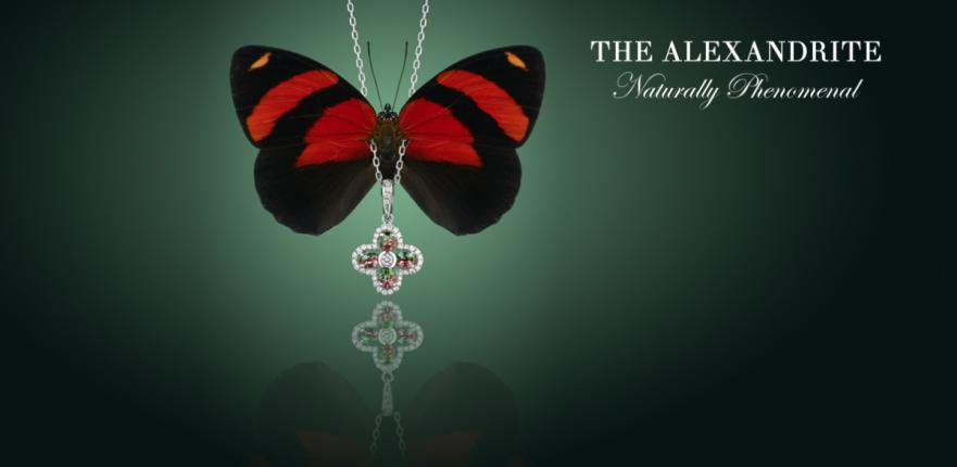 Alexandrite butterfly